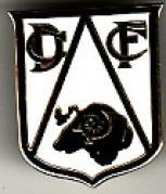 Large DCFC Shield